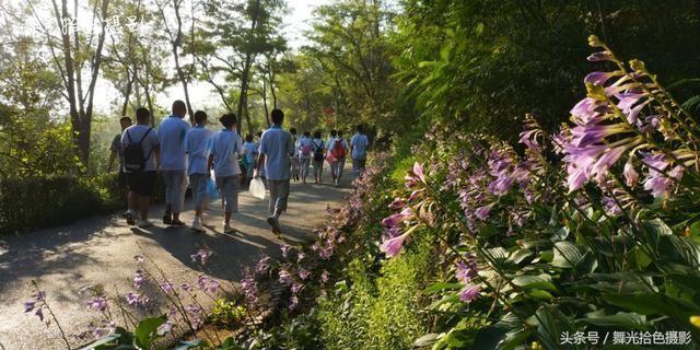 暑期,本溪十二中,初中生的社實踐全程輔導初中圖片