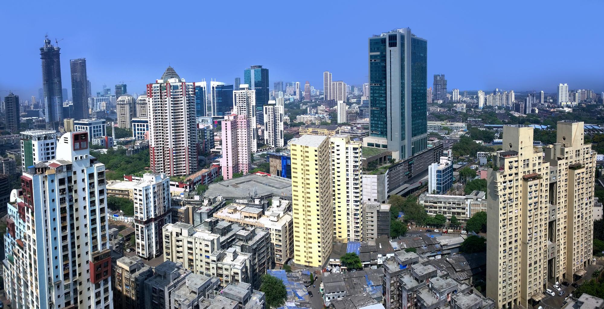 孟买gdp2021_孟买猫