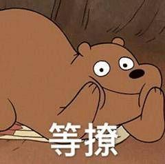 表情|《熊熊三贱客》三只裸熊表情小猫撒娇可爱表情包图片