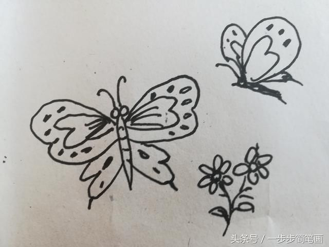一步步简单易学 蝴蝶简笔画,8步画美