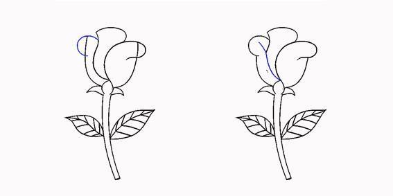 儿童简笔画玫瑰步骤教程,用心画才是真表白,让爱永不凋谢!