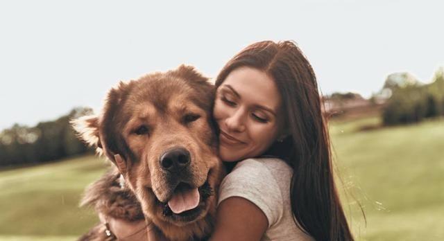 <b>为什么越来越多人喜欢养大型犬呢?其实背后的原因,大家都清楚</b>