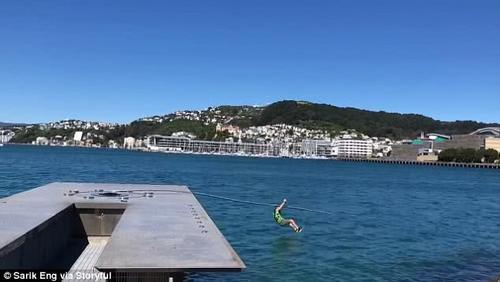 新西兰男子爬杆子炫技致其断裂没想它值两百万或面临天价赔偿