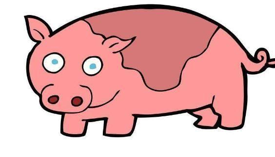 """1971年出岁的""""属猪人""""有劫难,你能度过去吗?"""
