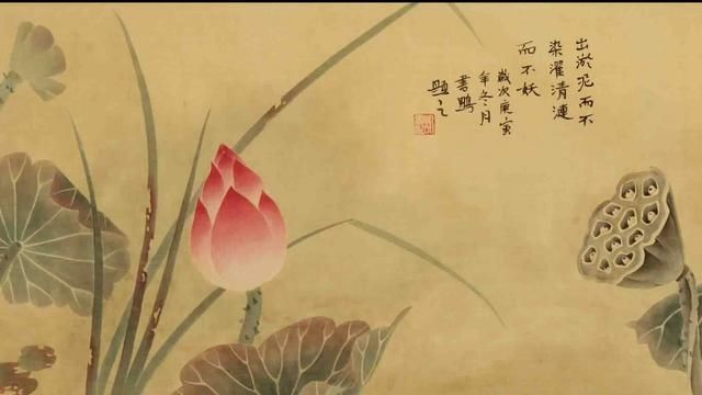 中国画基础知识,中国画技法之写意丝瓜,葫芦画法教程图文详解图片