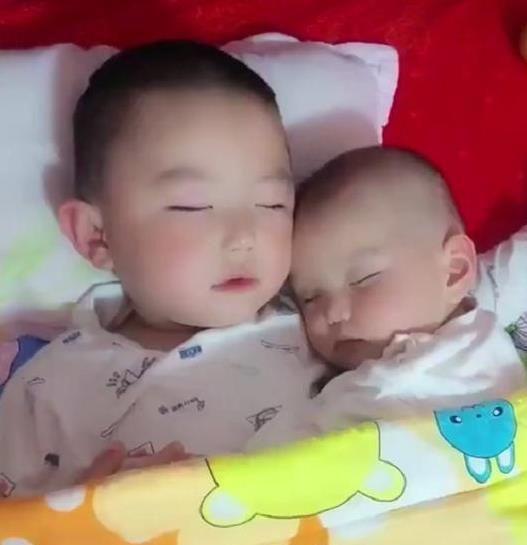 哥哥哄弟弟睡觉,妈妈看到的这一幕真暖心,谁说二胎孩子只会打架